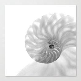 Nautilus Chambers... Canvas Print