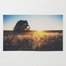 an Arizona sunset ... Rug