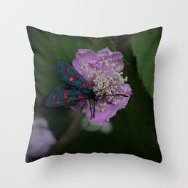 New forest burnet on purple flower Throw Pillow