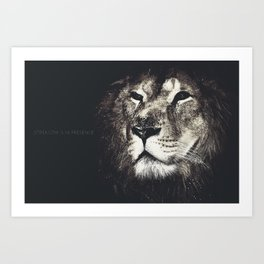 Lion in the dark Art Print