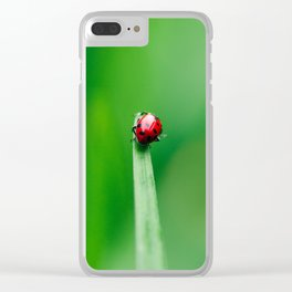 Balancing Acts Clear iPhone Case