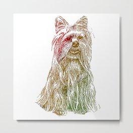 Yorkshire Terrier Metal Print