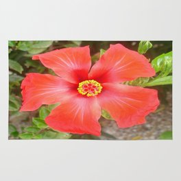 Head On Shot of a Red Tropical Hibiscus Flower Rug