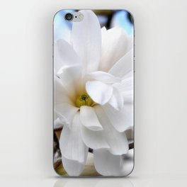 Magnolia 2 iPhone Skin
