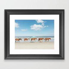 Summer Coast Horse Stride Framed Art Print