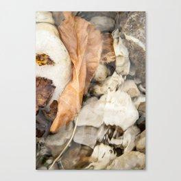 Underwater leaf Canvas Print