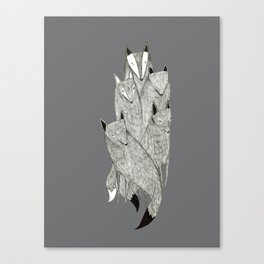 Foxes & Badgers Canvas Print