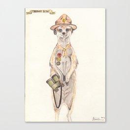 Meerkat Scout Canvas Print