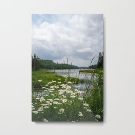 Boundary Waters Wildflowers Metal Print