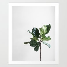 Plant Paradise vol.2 Art Print