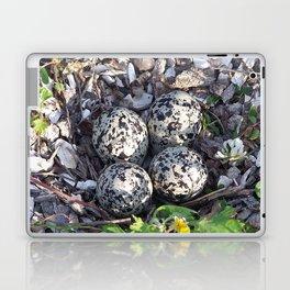 Killdeer eggs in nest Laptop & iPad Skin