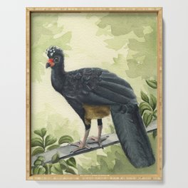 Wattled Curassow Serving Tray