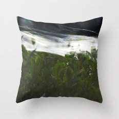 Cobwebs Throw Pillow