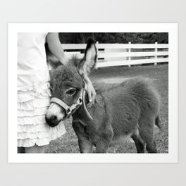Girl and Baby Donkey Black and White Art Print
