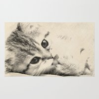 kitten Area & Throw Rugs featuring Kitten by Augustinet