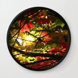 Maples in the Fall Wall Clock