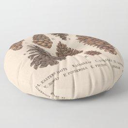Pinecones Floor Pillow