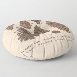 Pinecones Floor Pillow