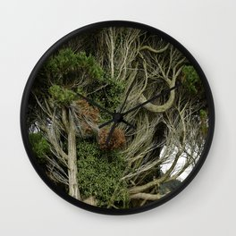 Witness Tree Wall Clock