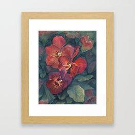 Pansies in the Twilight Framed Art Print