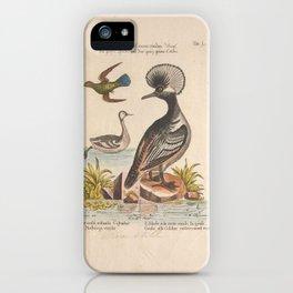 merganser crista rotunda3 iPhone Case