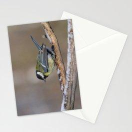 Sikora Bogatka Stationery Cards