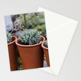 Potted Lavender Stationery Cards