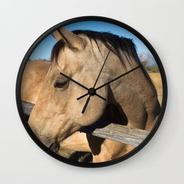 Shy - Horse Plays Coy in Western Wyoming Wall Clock