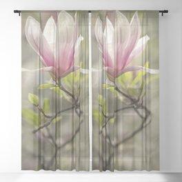 Blooming pink magnolia Sheer Curtain
