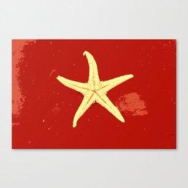 red seashell Canvas Print