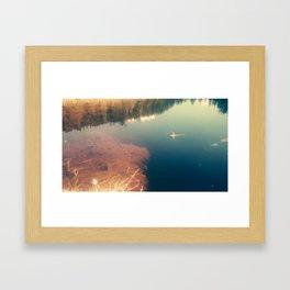 lakefrog#1 Framed Art Print