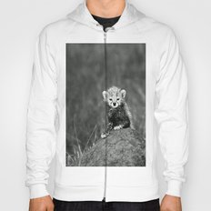 BABY - TIGER - NATURE - LANDSCAPE - ANIMALS Hoody