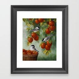 Chickadees and Apple Tree Harvest Framed Art Print