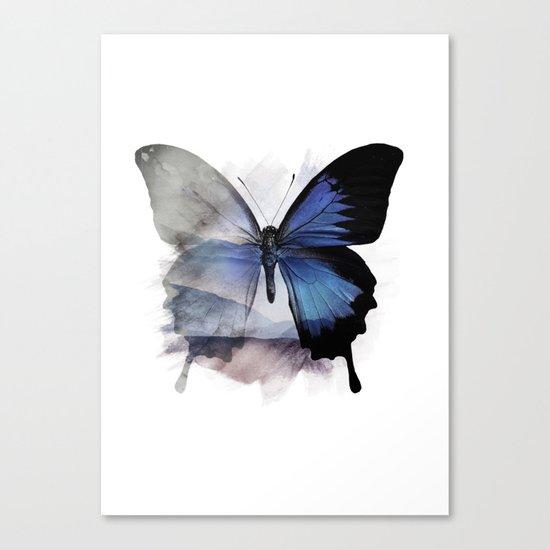 Blue Shadows Butterfly Canvas Print