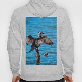 Cormorant Wings on Blue Water Hoody