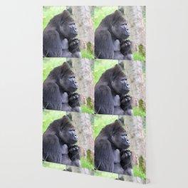 Gorilla 519-2 Wallpaper