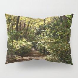 Crisp Pillow Sham