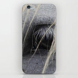 eye of the horse iPhone Skin