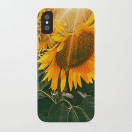 summer in the fields iPhone Case