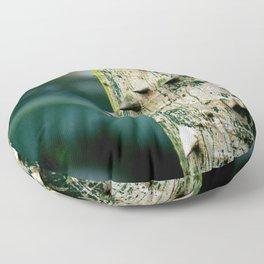 Thorny tree Botanical Photography Floor Pillow