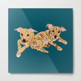 Twin dogs Metal Print