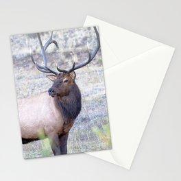 Watercolor Elk Bull 02, Estes Park, Colorado, Nonchalant Stationery Cards