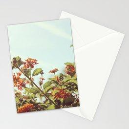 Orange Sunshine Stationery Cards