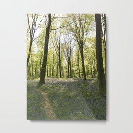 Deep in Micheldever Wood Metal Print