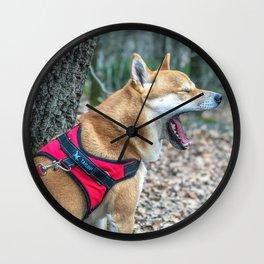 Shiba Inu yelling in the woods Wall Clock