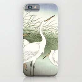 Herons in shallow water by Ohara Koson iPhone Case