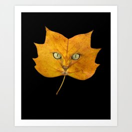 Autumn Cat-2 Art Print