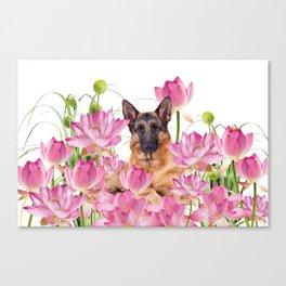 German Sheep Dog Lotos Field Canvas Print