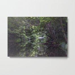 Freshwater Creek Metal Print