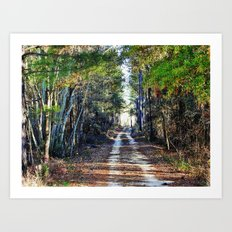 Country Trail Art Print